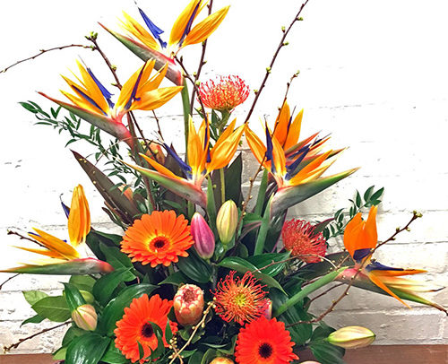 Fleurs Amanda Weybridge Surrey Bouquets Office Flowers