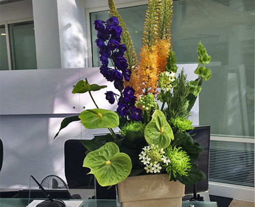 Fleurs-amanda-Surrey-Corporate-Flowers