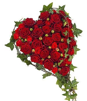 F160 Red Rose Hearts Fleurs Amanda