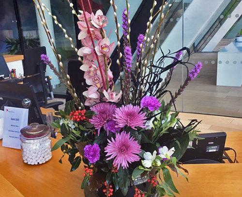 Fleurs-amanda-Surrey-office flowers